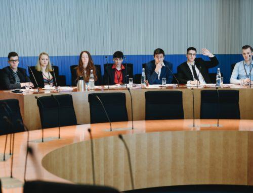 Meine Erfahrung beim Planspiel: Jugend & Parlament (Can Dümdüz/FO319)